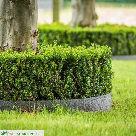 Dekorative ECO Randstreifen für das Gartenbeet