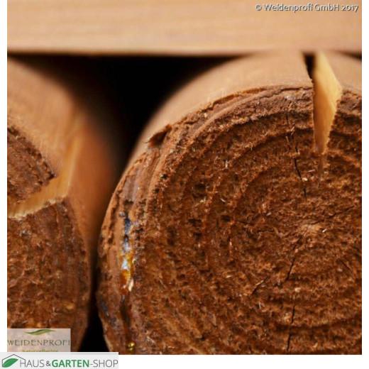 Holzpfosten Kiefer rund - Draufsicht
