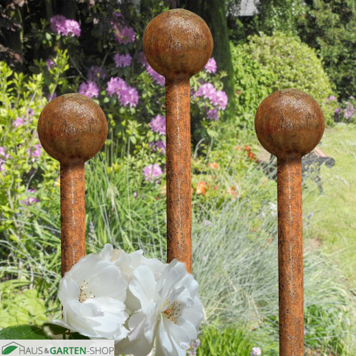 Rosenstab Needles- Rankgerüst im Garten