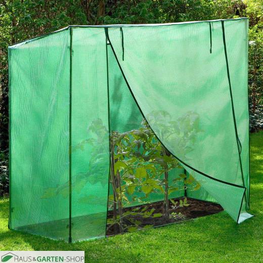 Tomatengewächshaus zum Schutz empfindlicher Pflanzen