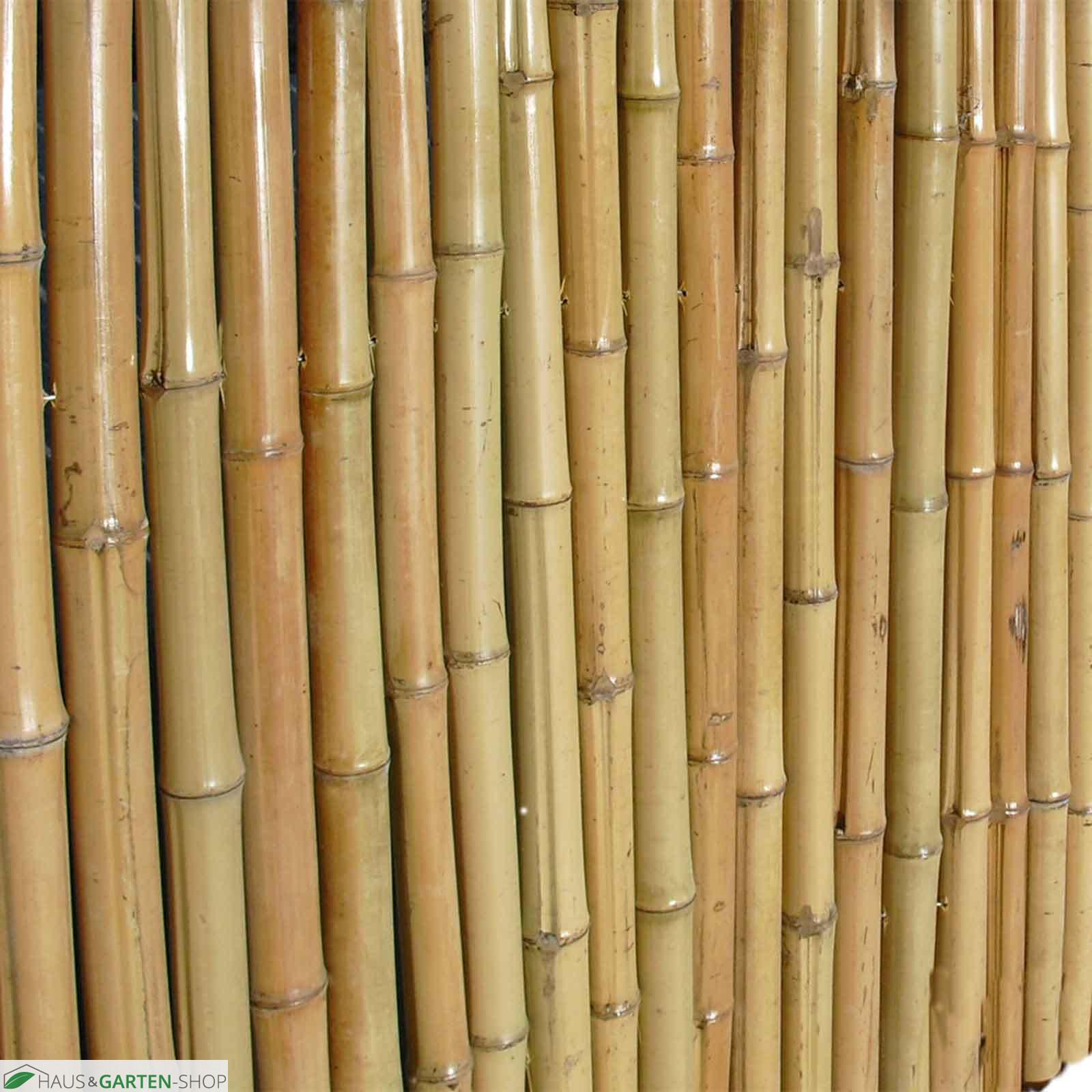 Bambusmatte Bahrain Bambusrollzaun Sichtschutzmatte