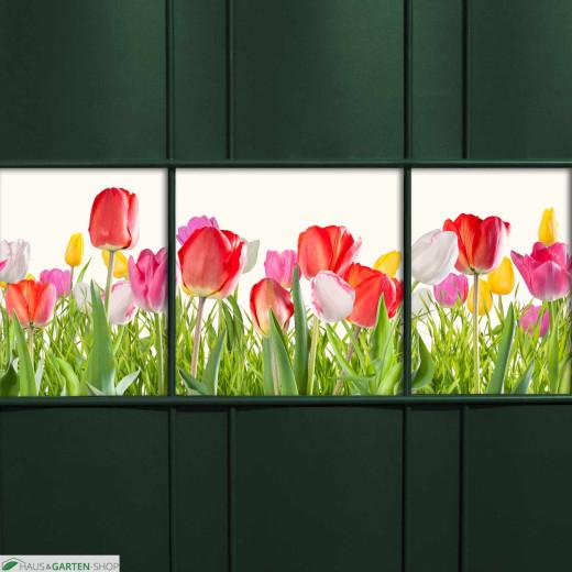 PVC Zaunblendenstreifen Motiv Tulpen