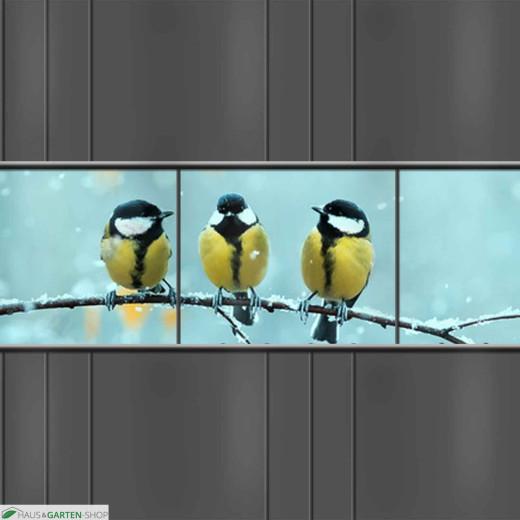 PVC Sichtschutz Streifen mit Wintervögel - Motiv