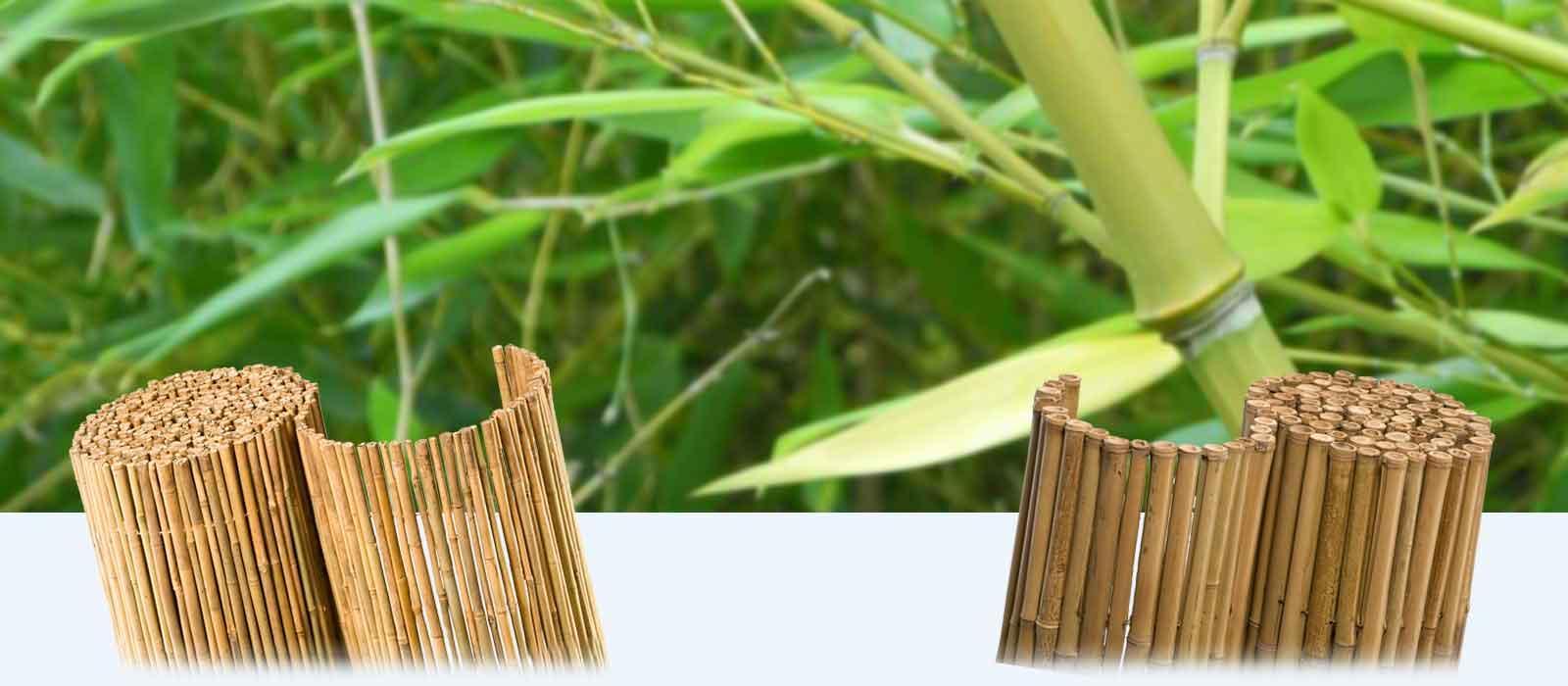 stabile und dichte bambusmatten als sichtschutz von h chster qualit t. Black Bedroom Furniture Sets. Home Design Ideas
