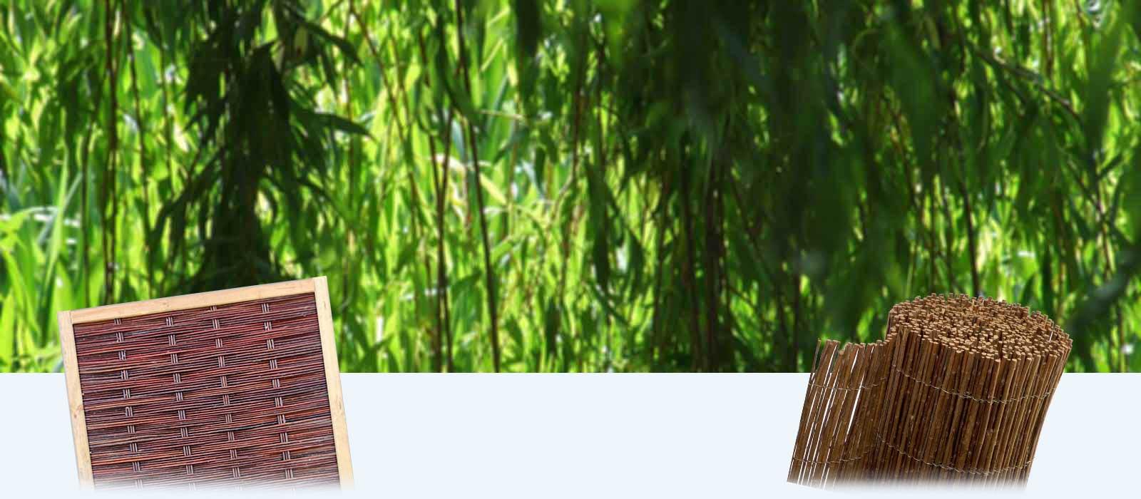 Bambus Sichtschutz Coop Kreatives Haus Design