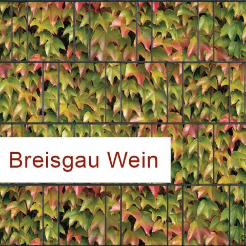 Sichtschutzstreifen Motiv bunter  Wein Breisgau