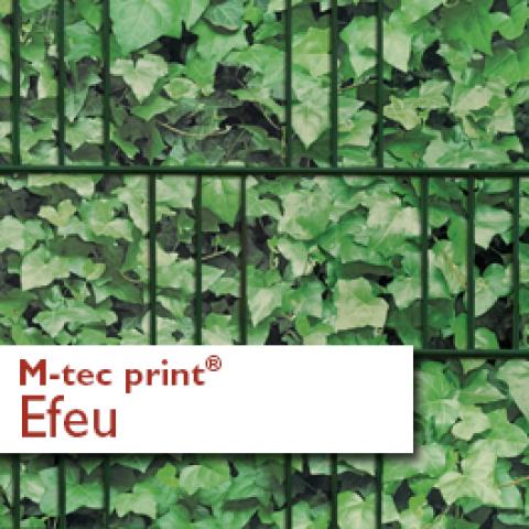 M-tec print® bedruckte Efeu Hecke | 3 Streifen