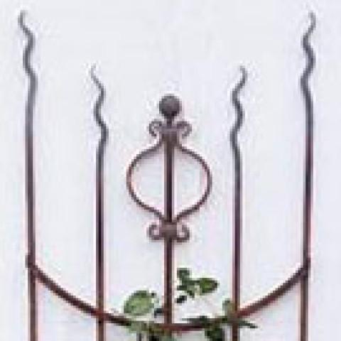 Rosenstab - Rankgerüst  Typ Prince of Wales