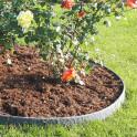 Rosenbeet mit ECO-Streifen