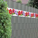 Sichtschutzstreifen mit Anemonen für den Garten