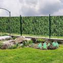 Bambushecke im eigenen Garten