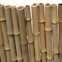 Bambusmatte Bahrain - kräftige Bambusstangen