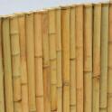 Bambusmatte Nagoya Typ nature - Bambusstangen Sichschutzmatte