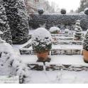 Haselnusszaun Beeteinfassung im Winter