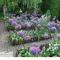 Haselnusszaun Beeteinfassung | Beete im Garten