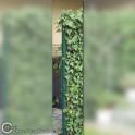 Eisenpfahl für Hecke am laufenden Meter
