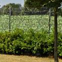 Sichtschutzstreifen Motiv Kirschlorbeer - Anwendung als Sichtschutzzaun