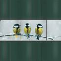 PVC Sichtschutz Streifen Kohlmeisen grau 9er