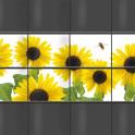 Zaunblickschutz mit Sonnenblumen-Motiv