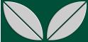PVC Design Streifen Motiv Blatt-moosgrün - hellgrau-9er Pack