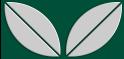 M-tec design Motiv Blatt grün - hellgrau
